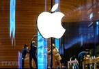 Việt Nam có 21 đối tác cung ứng cho Apple