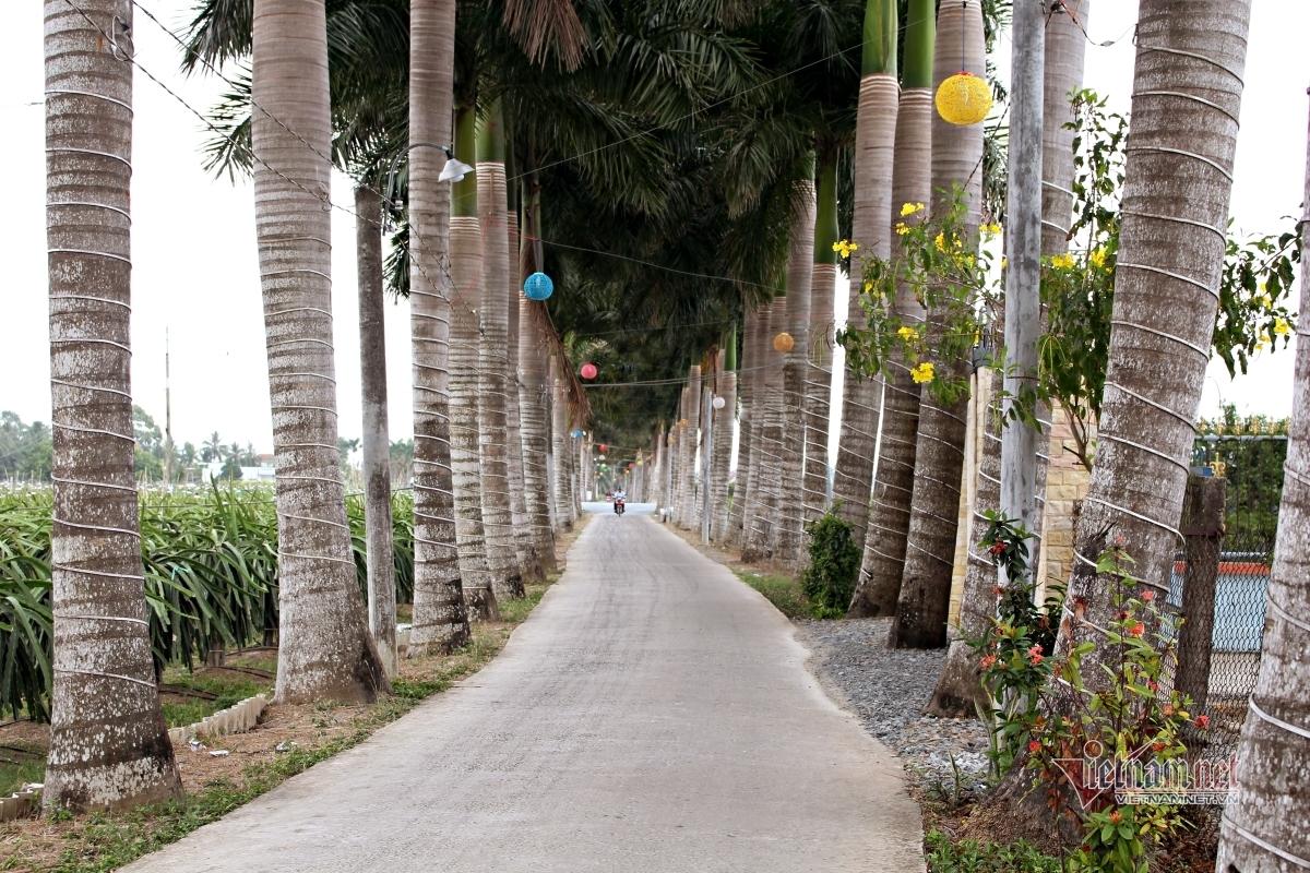 'Con đường hạnh phúc' đẹp mê mẩn, có một không hai ở miền Tây