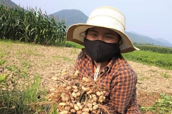 Nữ sinh giành thủ khoa kép thi HSG tỉnh Nghệ An