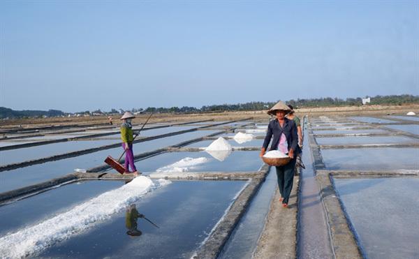Quang Ngai Province shelves UNESCO geopark recognition plans