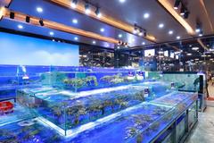 Bể chuyên dụng - bí quyết hải sản nhà hàng luôn tươi ngon