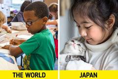 Sáu bí mậtgiúp hệ thốnggiáo dục Nhật Bảnhiệu quả nhất thế giới