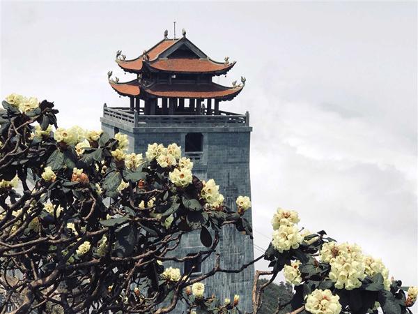 Lào Cai tung chương trình kích cầu du lịch 'khủng', giảm giá dịch vụ tới 70%