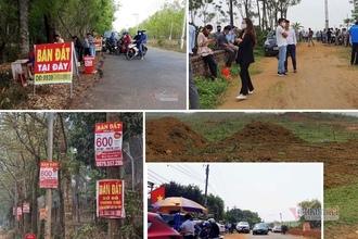Phó Thủ tướng: Xử nghiêm đối tượng lợi dụng thông tin 'thổi' giá đất