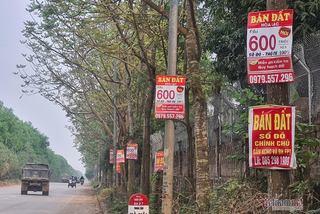 Bộ Xây dựng trả lời về đô thị vệ tinh Hoà Lạc, nhà đầu tư có nên 'ôm' đất
