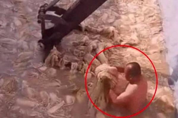 Hàn Quốc chấn động vụ khỏa thân muối kim chi