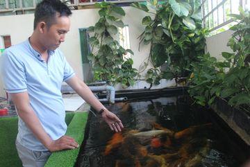 Trào lưu chơi thú cưng độc, lạ ở Long An