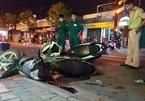 Bé trai gào khóc giữa phố Sài Gòn, ôm thi thể cha bị tai nạn xe máy