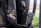 Liều lĩnh 'mổ' dây cáp, trộm gần 1000 kWh điện