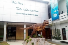 VN National Museum of Nature - ideal destination for nature lovers and researchers