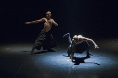 Contemporary dancer gets inspiration from Vietnamese classic drama
