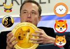Cha đẻ Dogecoin: 'Elon Musk là kẻ chỉ biết quan tâm tới bản thân'