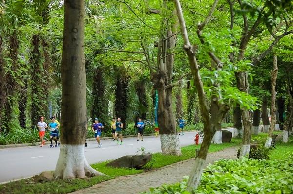 Ấn tượng cung đường chạy rợp sắc hoa của Ecopark Marathon 2021