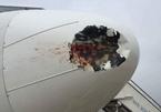 Máy bay bị chim va làm vỡ ống dầu thuỷ lực