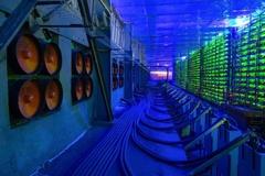 Người Trung Quốc đổ xô đào 'bitcoin xanh', giá ổ cứng tăng vọt