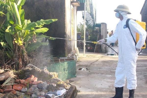 Nghệ An khẩn trương triển khai quyết liệt phòng, chống bệnh Cúm gia cầm