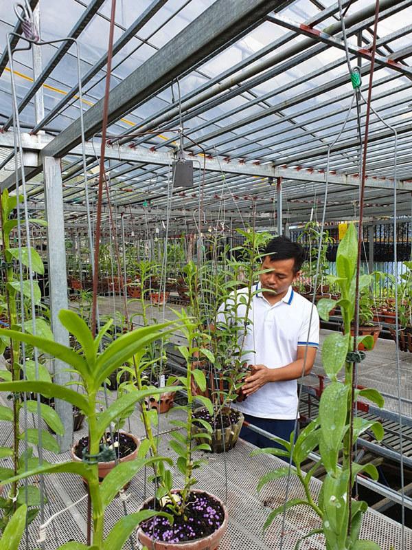 Ông chủ vườn lan 8X theo đuổi đam mê loài hoa vương giả