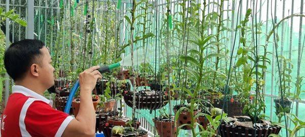 Startup Sài thành say đắm lan rừng, khởi nghiệp thành công
