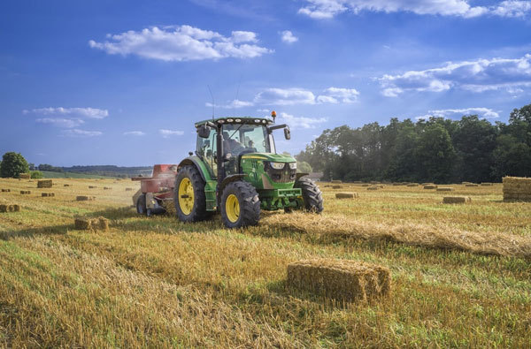 Vietnam's potential to drive agri-food recovery ranks second highest in the region
