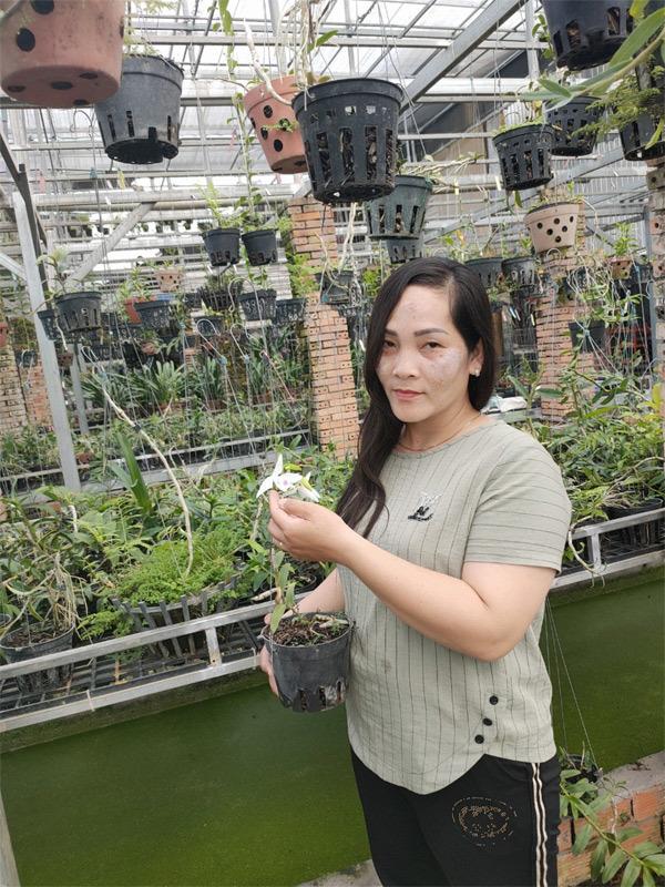 'Bóng hồng' sở hữu vườn lan 1000 m2 ở Đồng Tháp