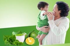 5 vị thuốc Nam quen thuộc hỗ trợ giảm ho cho trẻ