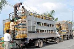 Ban Chỉ đạo 389 quốc gia và địa phương nỗ lực chặn việc nhập gia cầm, sản phẩm gia cầm trái phép vào Việt Nam