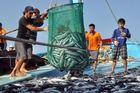 Kịch liệt phản đối lệnh cấm đánh bắt cá ngang ngược của Trung Quốc