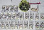 Bắt 'siêu trộm' khoắng tiền, USD, vàng trị giá 1,7 tỷ ở miền Tây