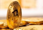 Khủng hoảng không thể cứu vãn, Bitcoin lao xuống đáy sâu mới