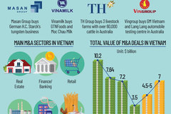 Vietnamese buyers cross the ocean for M&A transactions