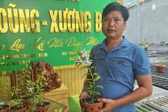Người đàn ông Hoà Bình vào Kon Tum trồng vườn lan tuyệt sắc