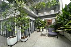Mát mắt với nhà phố ở Sài Gòn ngập cây xanh, trĩu trịt hoa trái