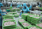 As rivals face 'bad luck', VN seafood exports could rise to Russia, the US