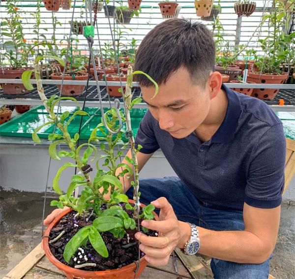 Ông chủ vườn lan Sài thành chia sẻ bí quyết khởi nghiệp