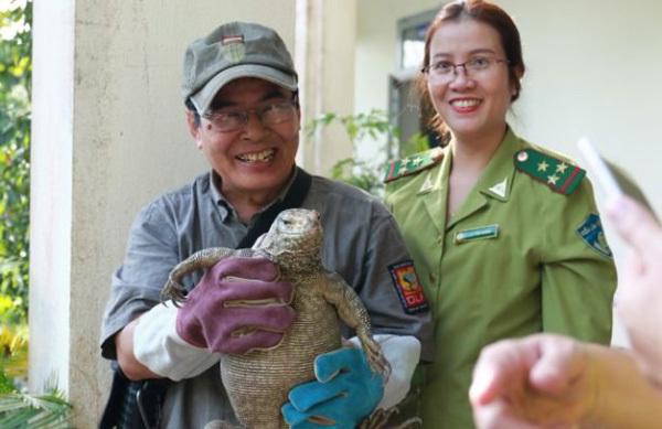 Wildlife violations reduced in Hue, Quang Nam and Da Nang