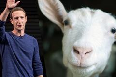 Mark Zuckerberg từng tự tay giết một con dê để đãi CEO Twitter