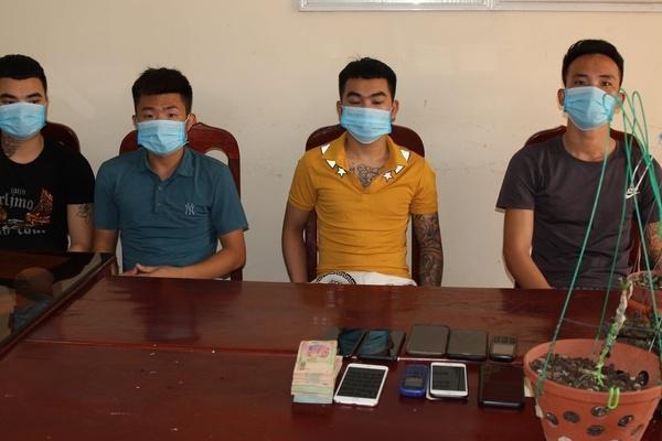 Bắt ổ nhóm bán lan 'đột biến' giả chiếm đoạt gần 4 tỷ đồng ở Hà Nam