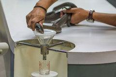 Nổi da gà với nghề vắt 'sữa' rắn