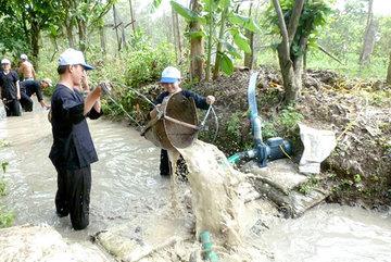 HCM City's rural districts expandagrotourism activities