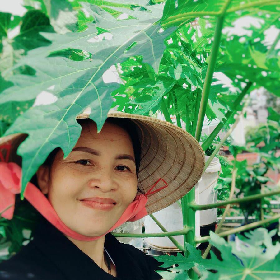 Vườn trĩu trái trên sân thượng của bà chủ ở TP.HCM