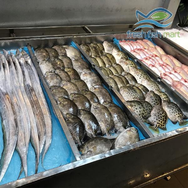 Siêu thị cá sạch - địa chỉ mua hải sản tươi ngon ở Đà Nẵng