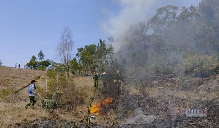 Rừng thông bốc cháy dữ dội, hàng trăm người dập lửa ở Quảng Nam