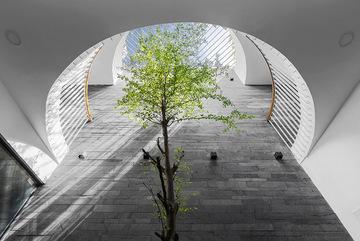 Xu hướng thiết kế giếng trời trong ngôi nhà hiện đại