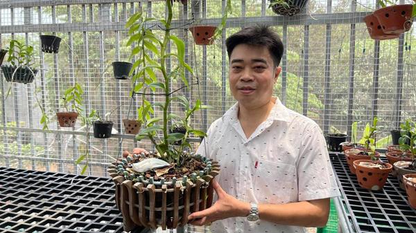 Vườn lan đa sắc của ông chủ 8x ở Bình Phước