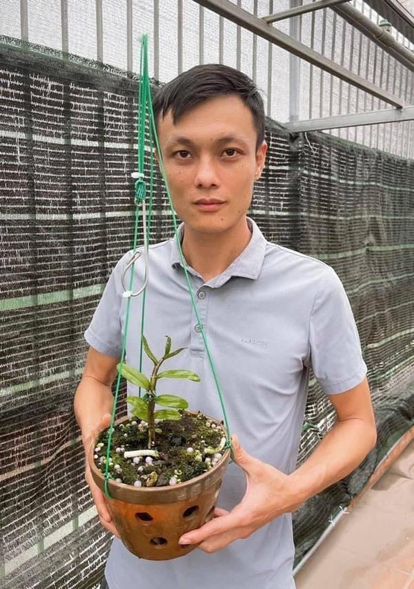 Bí quyết trồng lan: 'Ăn ngủ, vui buồn, sẵn sàng cạn kiệt cùng lan'