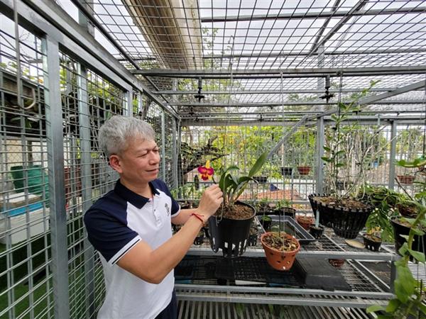 Ông chủ vườn lan Hà Nội: giá trị hoa lan không thể định bằng vật chất