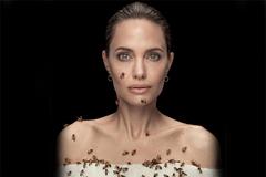 Angelina Jolie chụp ảnh với ong