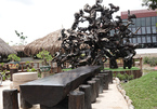 An Giang man owns unusual artworks made of old driftwood