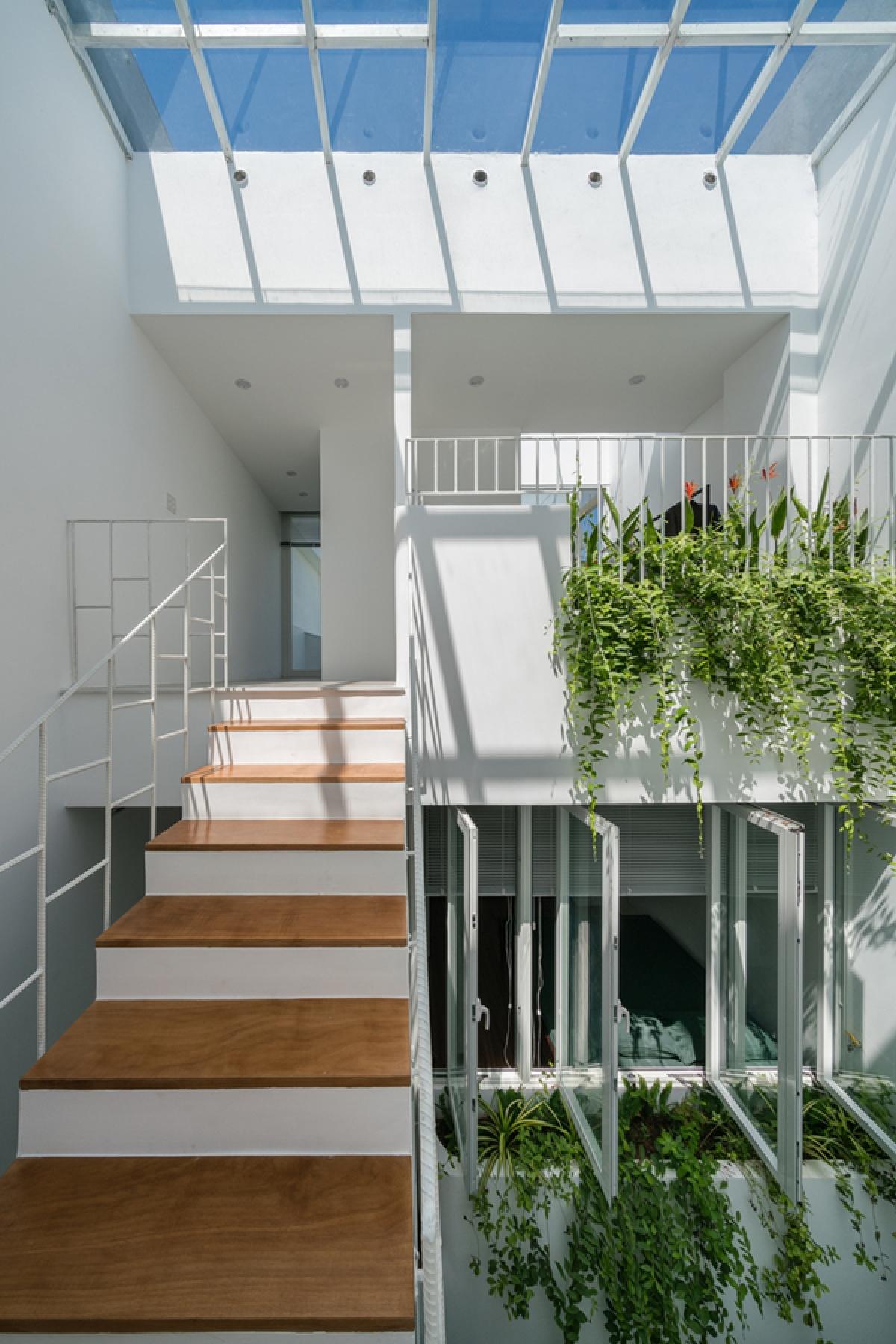 Ngôi nhà yên bình có cây xanh ở khắp mọi nơi