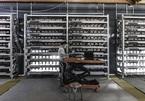 Mỏ đào Bitcoin ở Trung Quốc bắt đầu dừng hoạt động
